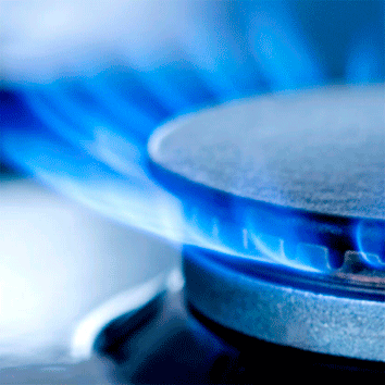 Consejos de Seguridad en el uso del gas. INSPECCIÓN, REVISIÓN O MANTENIMIENTO DEL GAS